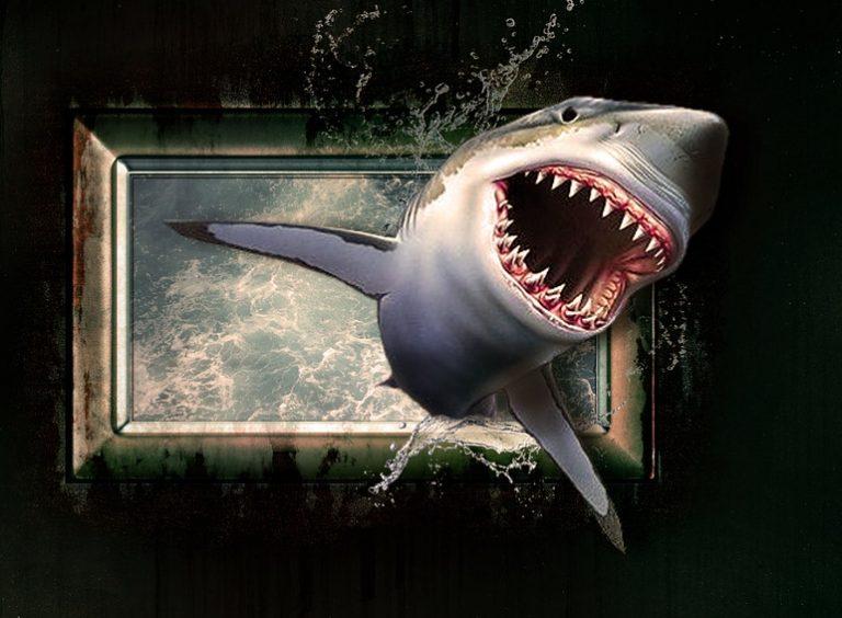 サメやらピラニアやらの映画をた...